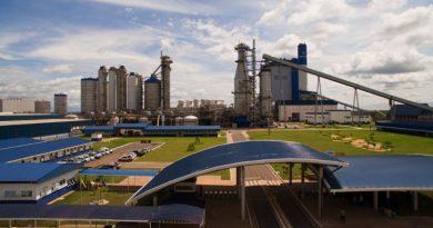 Suzano abre inscrições para programa de estágio no Maranhão, São Paulo e Bahia