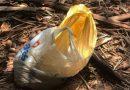 Recém-nascido é encontrado pela PM dentro de sacola plástica em bairro de Imperatriz