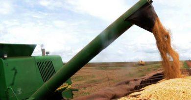 Conab aponta aumento na produtividade de grãos na safra 2018/2019