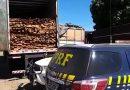 Balanço da PRF aponta apreensão de 42 carretas transportando madeira irregular na Região Tocantina
